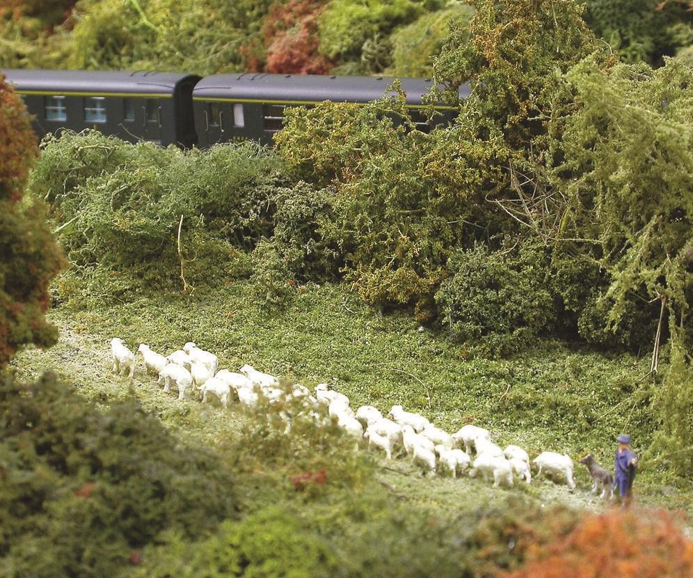N ne veut pas dire absence de saynètes détaillées comme en témoigne ce troupeau de moutons en transhumance...