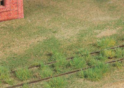 14–Complétez la végétation par un apport d'un flocage fin Woodland.