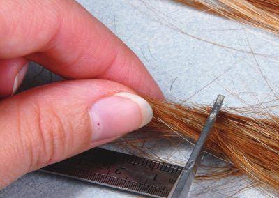 Il suffit de ciseaux pour obtenir les fibres dont vous avez besoin. Et d'un réglet pour vous donner une indication de taille, ici de l'ordre de 1,5-2 mm.