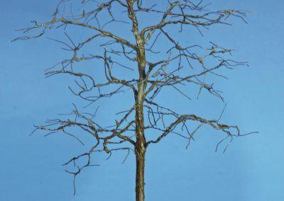 15 – La «charpente» de l'arbre vient de recevoir sa première couche de peinture, ici marron.
