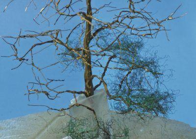 18 – Les premières touffes sont posées au bas des branchages. Remarquez la protection en papier crêpe dans le cas d'une fixation par pulvérisation de colle en bombe.